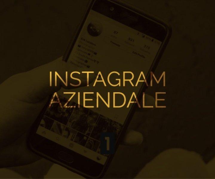 Scopri perchè è importante pubblicizzare un'azienda su Instagram tramite una pagina Instagram Aziendale.